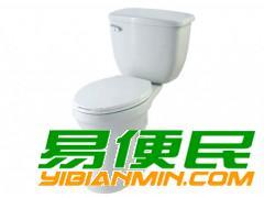 上海丹丽Dynasty马桶节水失控专修售后服务.黄浦区丹丽马