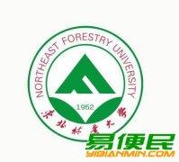 东北林业大学自考专、本科课程简单助学力度大本科学位稳妥